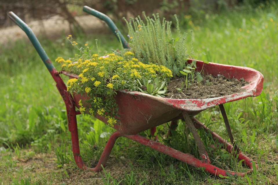 tips for landlords when hiring a gardener